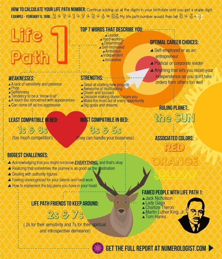 Life path 8 career choices