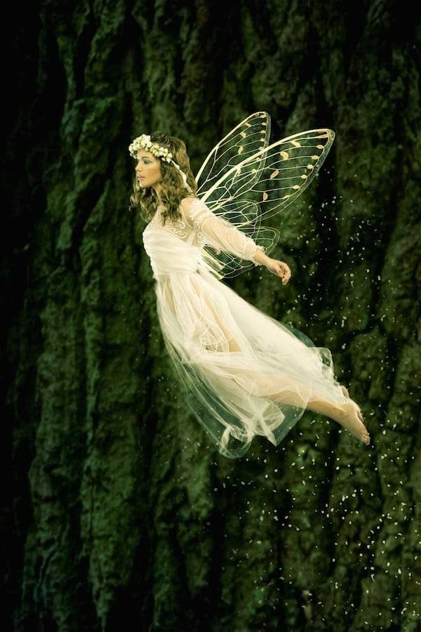 What's Your Fairy Name? The Easy Peasy Fairy Name Generator