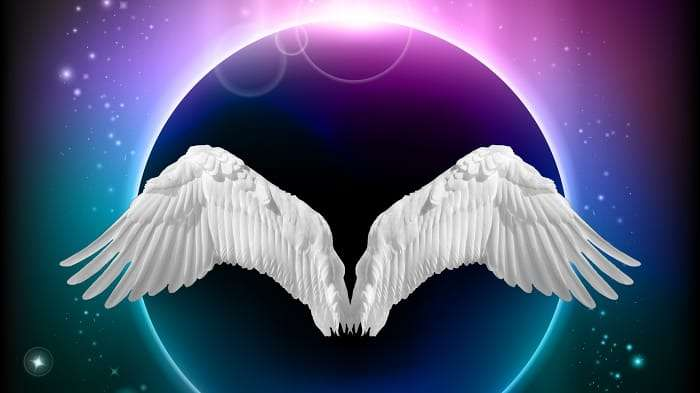 white wings under a night sky eclipse