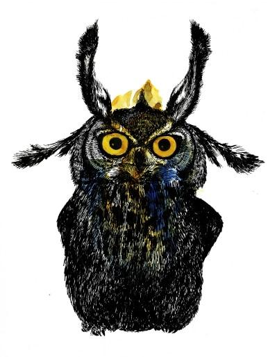 owl-spirit-guide