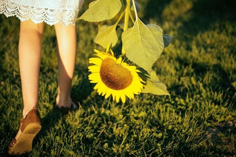 Lughnasadh Girl Holding Sunflower