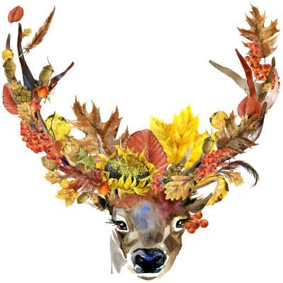 september numerology astrology tarot