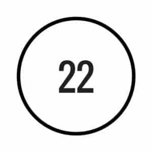 Numerology Master Number 22