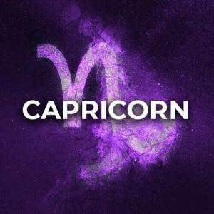 Capricorn (Dec 22 - Jan 19)